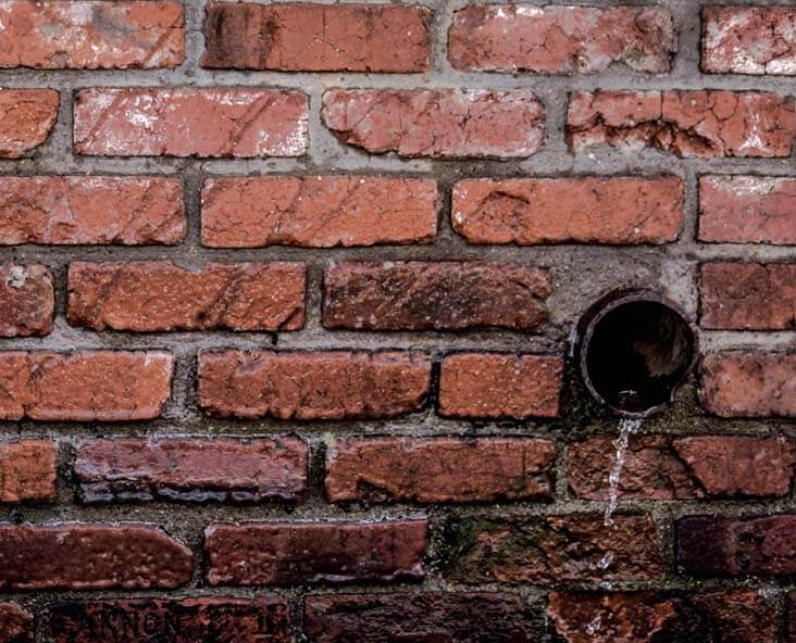 brick-wall 732x592