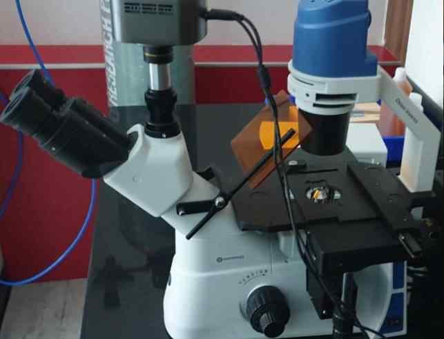 Imaging Lab4